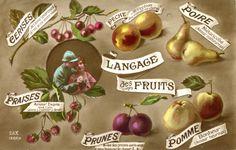 Carte postale ancienne, collection de l'écomusée du Perche. Il existait également un langage des fleurs, autant de codes pour se faire comprendre à mi-mots.