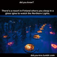 Hay un centro turístico en Finlandia donde duermes en un iglú de cristal para poder ver la aurora boreal.    Source