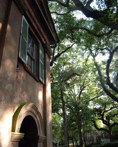 Porter's Lodge Charleston