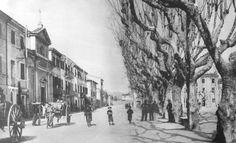 Viareggio -via Garibaldi