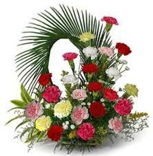 20 Mix Color Carnations : buy flowers online, buy cake online, send flowers, cakes to India Basket Flower Arrangements, Creative Flower Arrangements, Beautiful Flower Arrangements, Floral Arrangements, Beautiful Flowers, Church Flowers, Funeral Flowers, Deco Floral, Arte Floral