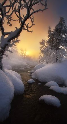 A COLD WINTERY NIGHT WITH TWINKLING SNOW FLAKES FILLS MY HEART WITH BEAUTIFUL MEMORIES