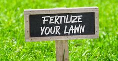 Buying fertilizer for a lawn can be confusing, a spring feeding schedule is where many people start their fertilization program. However, all the numbers on bags can stop a homeowner in their tracks. Find out what you need to buy the best fertilizer for your lawn. Question: My neighbor always seems to be out with his …