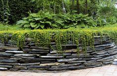 Kivisen Vilman kotipiha: Kirja Kivi puutarhassa
