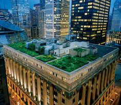 Roof Garden at the City Hall in Downtown Chicago