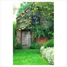 rustic outbuildings | GAP Photos - Garden & Plant Picture Library - Rustic outbuilding with ...