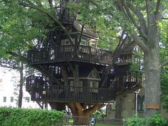 Kevin & I will have a tree house when we retire or sooner:) Luxury Tree Houses, Cool Tree Houses, Amazing Houses, House Yard, House 2, Dog Houses, Play Houses, Fancy Houses, Dream Houses