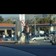 Always make me sad seeing homeless dogs. I always want to feed the dog.
