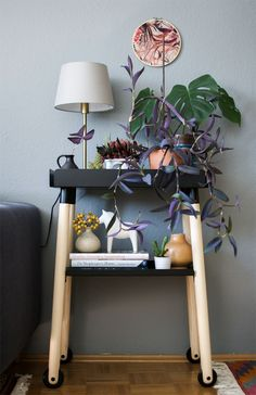 It is one year ago that we featured the first plant shelfie on Urban Jungle Bloggers.