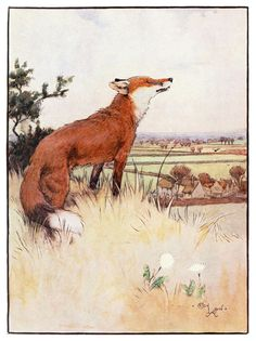 """""""White-ear and Peter: The story of a fox and a fox-terrier"""" Illustrated by Cecil…"""