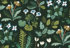 CARRIE SHRYOCK — Field Trip Modern Girls Rooms, Sleeping Under The Stars, Hallmark Cards, Plant Art, Pattern Illustration, Surface Pattern Design, Botanical Art, Natural World, Carrie