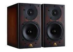 Castle knight 1 bookshelf speakers, amazing sound for the value.