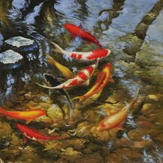 Modern sitting wall decor print oil painting Feng Shui Fish Koi Painting jhdw39
