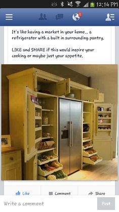Awesome--surrounding frig with pantry