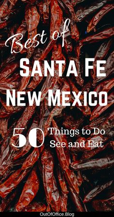 The best things to do in Santa Fe New Mexico: Spanish Pueblo architecture, art galleries, public sculpture parks, silver and turquoise jewelry, pottery. New Mexico Road Trip, Travel New Mexico, Mexico Vacation, Mexico Tourism, Tennessee Vacation, Vacation Places, Vacation Spots, Vacation Ideas, Canada Travel