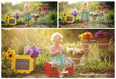 Wildflower Stand Outdoor Photography