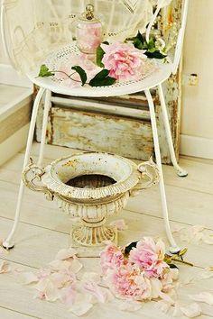 pretties on chairs .. X ღɱɧღ bonbonne0