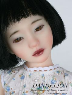 resin doll pictures | Narin Doll Dandelion Doll