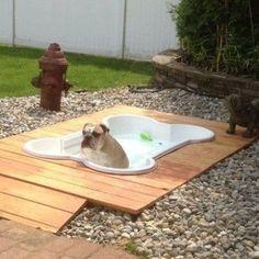 Bone Shaped Dog Pool! http://whatpetswant.com/bone-shaped-dog-pool/