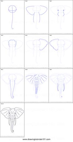 Tegninger How To Draw An Elephant Head Printable Step By Step Drawing Sheet Drawing Draw drawing Drawing step by step Elephant Printable Sheet Step Tegninger Pencil Art Drawings, Art Drawings Sketches, Animal Drawings, Easy Drawings, Drawing Animals, How To Draw Animals, Animal Sketches Easy, Elephant Sketch, Elephant Art