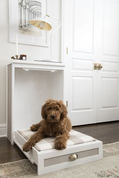 Dogs diy bed pet furniture ideas for 2019