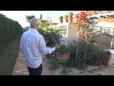 Curso de Decoração - Aula 6 (Jardins)