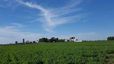 Avalon farmstead