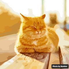 A cat sits in the sun Sun Painting, Cat Sitting, Om, Pikachu, Cats, Fictional Characters, Gatos, Sun Drawing, Cat