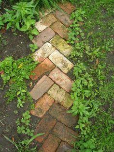 Repurposing Bricks to Make a Walkway | DIY Walkway Ideas to DIY Before Summer Begins