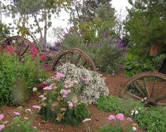 The way old wagon wheels SHOULD be used... with just the right flowering plants scattered around them.