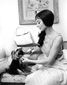 Audrey Hepburn photographed fixing the bow on her dog, Mr. Famous, while in her dressing room on the set of Green Mansions, 1958.