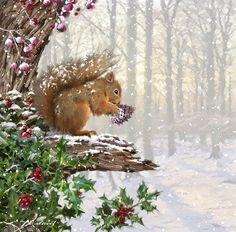 Framed Christmas Squirrel Print