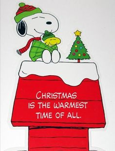 """Christmas is the warmest time of all"", Snoopy and Wiodstock, a Charlie Brown Christmas❤️🎄🎁 Peanuts Christmas, Charlie Brown Christmas, Noel Christmas, All Things Christmas, Winter Christmas, Xmas, Christmas Greetings, Peanuts Cartoon, Peanuts Snoopy"