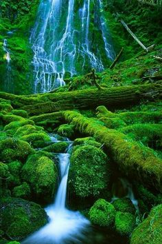 Nature beautiful #waterfall #mountain #green