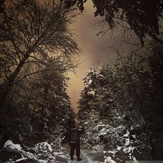 Hiking #hiking #nightphotography #nature #iphone_only #forest #vsco #vscocam #vscogood #vscorussia #explore #night #sky #winter #russia #amazing #all_shots #instacool #look #instadaily #instago #instagood #beautiful #skylovers #trip #journey #vscaward #photography #travel #mothernature