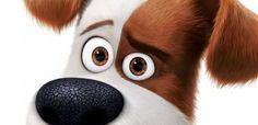 Novos e fofos cartazes de Pets: a vida secreta dos Bichos ...