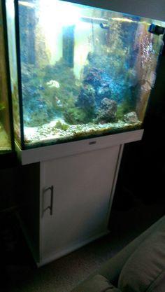 Lido 200 Aquarium and Cabinet by Juwel PLUS ACCESSORIES!!