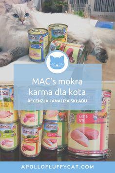 Razem z puchatym kotem Apollo przetestowaliśmy karmę MAC's - bezzbożową, mokrą karmę dla kotów o wysokiej zawartości mięsa, która nie zawiera sztucznych dodatków, aromatów i konserwantów. Jak wypada ta karma w mojej dokładnej analizie składu? Mac S, Karma, Fluffy Cat, Juice Bottles, Cat Food, Apollo, Blog, Cat Feeding, Blogging