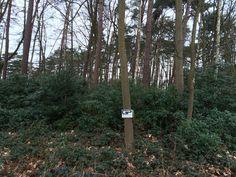 Bouwgrond van 4.582 m² rustig en groen gelegen in hartje Koningshof - http://www.grondenplatform.be/2016/03/bouwgrond-van-4582-m-rustig-en-groen.html?utm_source=rss&utm_medium=Sendible&utm_campaign=RSS