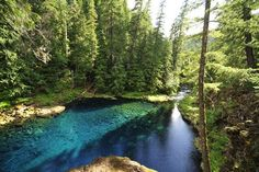 Blue Pool, McKenzie River Oregon - camping!!