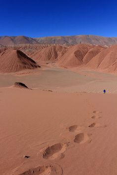 ♥️ Pinterest: DEBORAHPRAHA ♥️ Tolar Grande. Salta. Argentina
