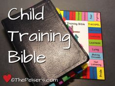 Child Training Bible Review - great resource for teaching scripture and character to kids.