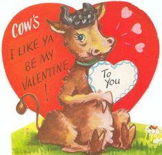 Cow's I Like Ya...valentine