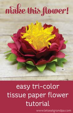 Tri-Color Tissue Paper Flower Making this three-color tissue paper flower is surprisingly easy! Great for weddings, showers, and other fun parties. Faux Flowers, Diy Flowers, Beaded Flowers, Fabric Flowers, Crochet Flowers, Diy Paper, Paper Crafts, Tissue Paper Flowers, Paper Roses