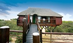 Photos of The Stiltz, Swakopmund - Bed and Breakfast Images - TripAdvisor Places Ive Been, Places To Go, Namibia, Adventure Bucket List, Room Pictures, African Animals, Bed And Breakfast, Lodges, Trip Advisor