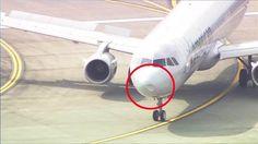 美國航空公司載有約156人、航班編號AA2310的空中巴士A321-200客機,從華盛頓州西雅圖市塔科馬機場起飛後不久遭遇鳥擊,機鼻嚴重凹陷,該機隨即發出緊急狀態訊息,在空中盤旋耗掉油料後,已安全返降塔科馬機場。美國媒體拍到該機降落後的照片顯示,機鼻清晰可見一處大型的凹痕。該機原本預定飛往德州達拉斯市的福特沃斯機場。