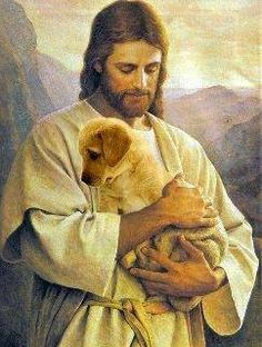 Jesus Christ will come again, so is written in the Holy Bible. Christians believe that Jesus is their Savior. Jesus' words means Savior. Images Du Christ, Pictures Of Jesus Christ, Jesus Pics, Jesus Images Hd, Lord Is My Shepherd, The Good Shepherd, Jesus Shepherd, Image Jesus, Jesus Christus