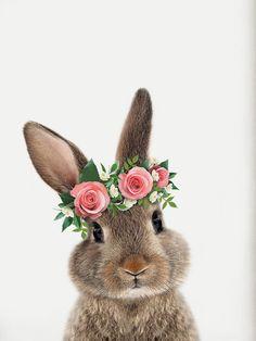 Easter Art, Easter Crafts, Easter Bunny, Bunny Art, Cute Bunny, Baby Animals, Cute Animals, Easter Greeting Cards, Rabbit Art