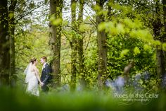 Spring Woodland at Hollin Hall Hotel, Cheshire Wedding