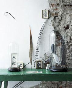 globe en verre : 10 idées pour une déco sous cloche !   Une hirondelle dans les tiroirs